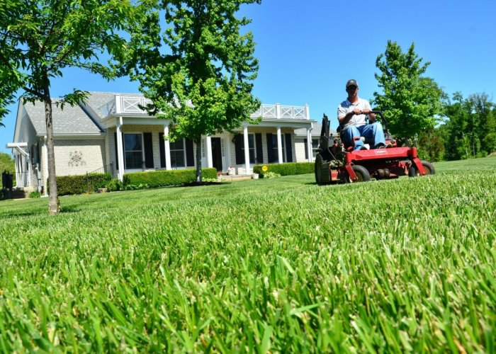 Missouri Lawn Care, Missouri Snow Removal, Missouri Landscaping, Missouri Tree Triming